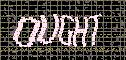 If your CAPTCHA image does not appear within five seconds, please hit the refresh button on your browser.
